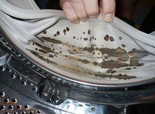 Плесень в стиральной машине — как и чем отчистить?