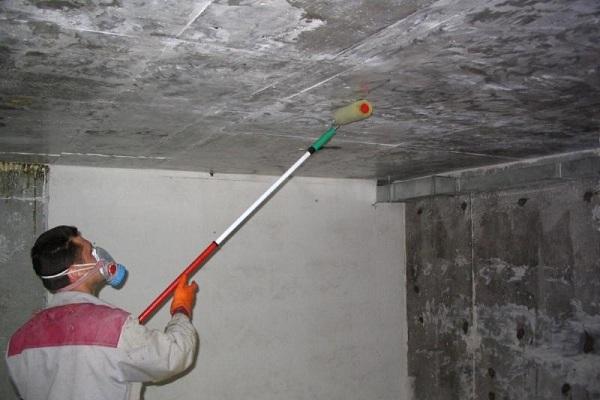 как бороться с плесенью в подвале