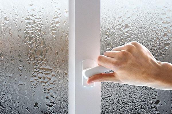 Плесень на окнах - как убрать с пластиковых и деревянных?