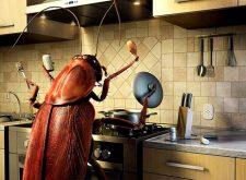 Лучшие средства от тараканов