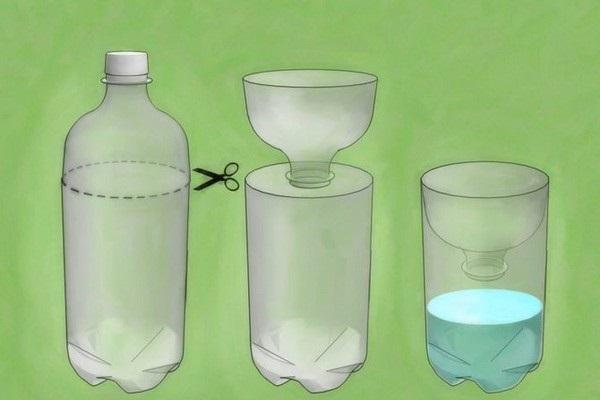 Капустная белянка: основные методы борьбы