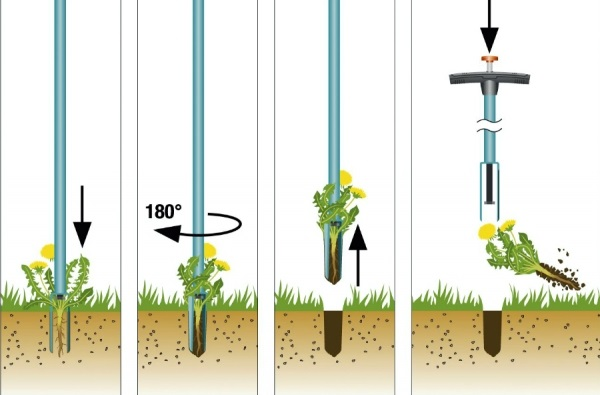 инструмент для удаления сорняков